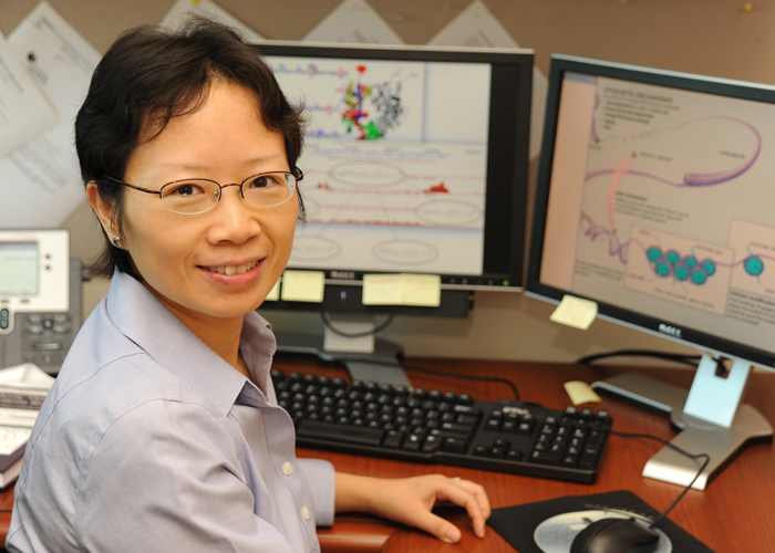 UCF Computer Scientist Helps Unlock Health Mysteries | University of Central Florida News